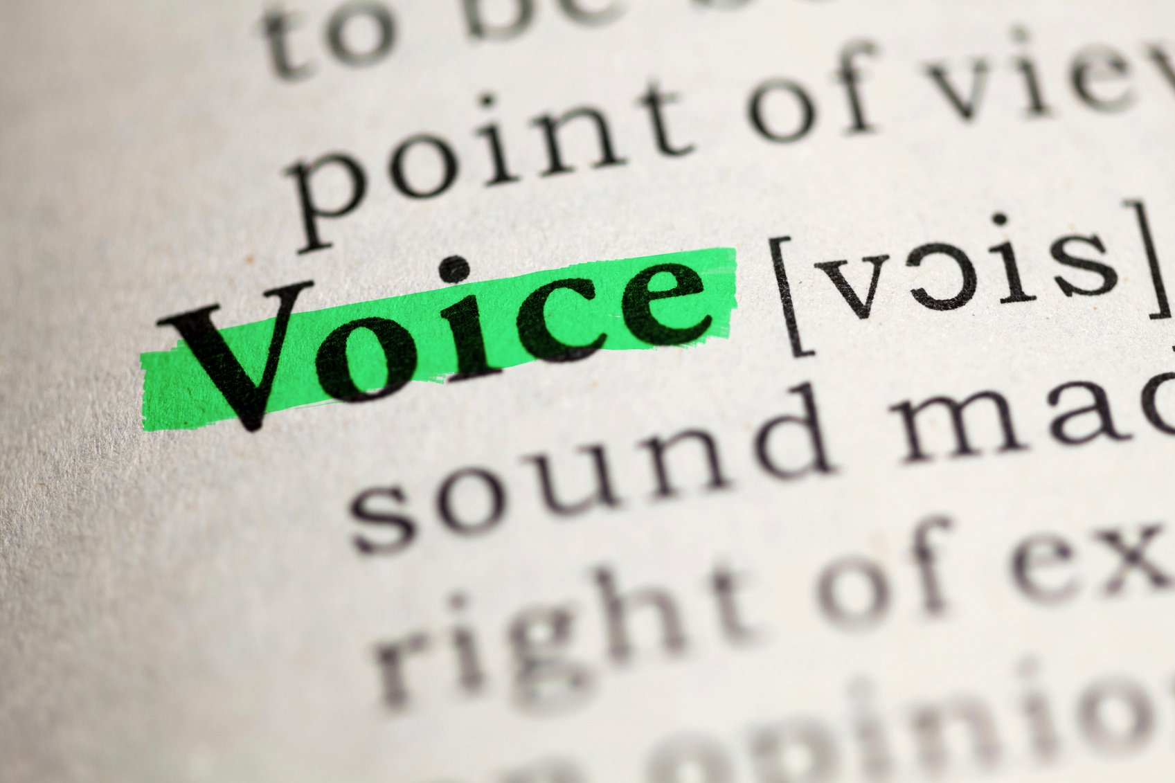 Definition of voice