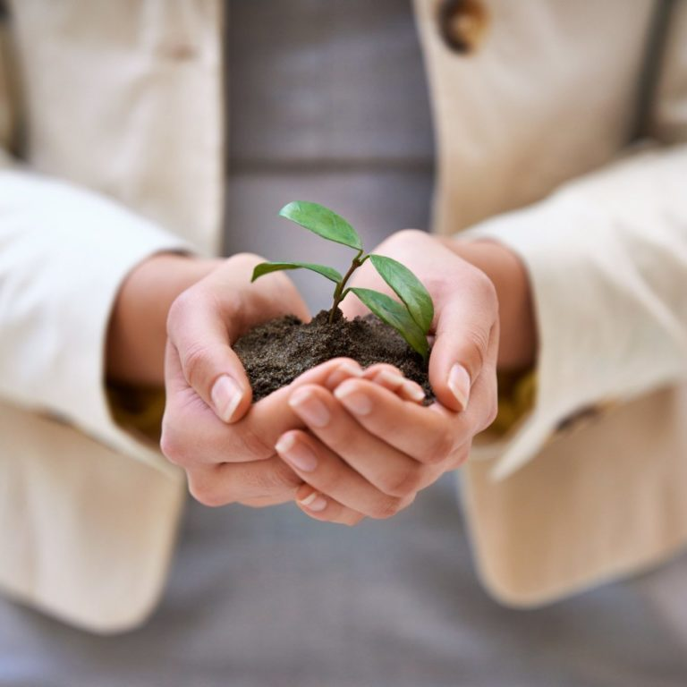 Woman holding soil with small plant growing