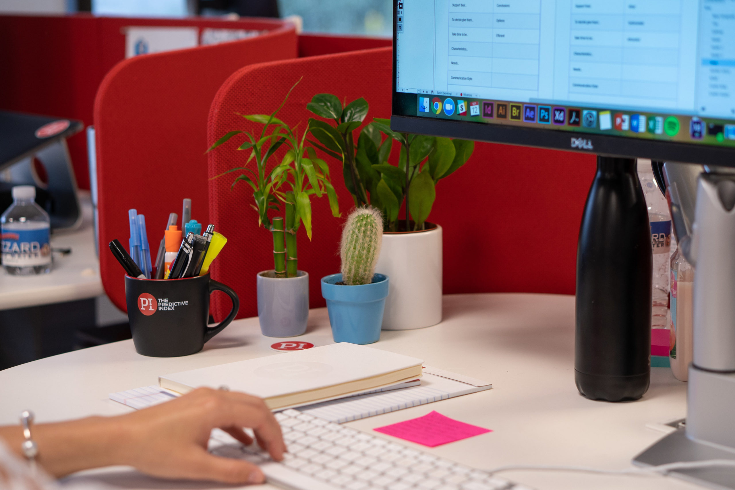 Office plants clean the air and reduce employee stress