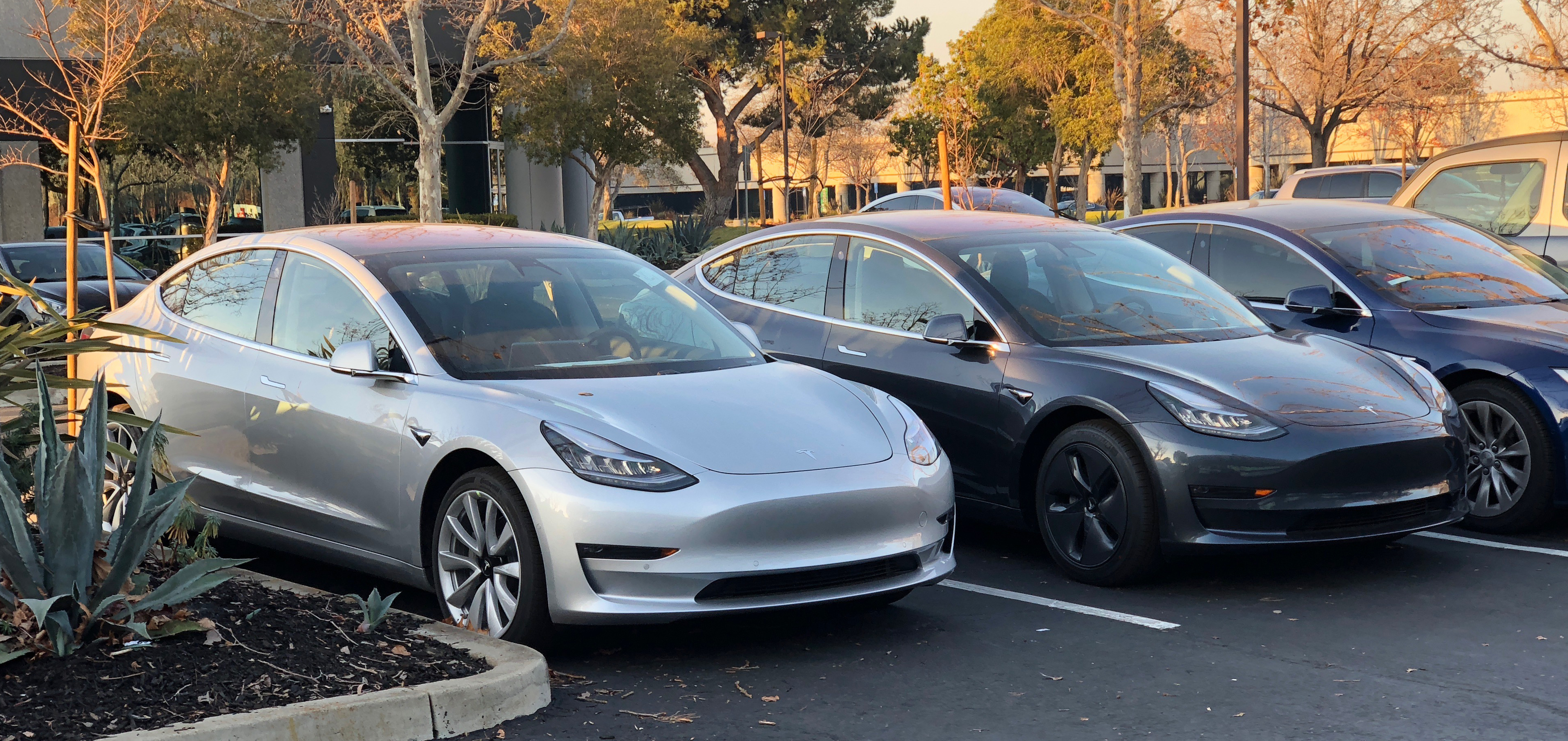 Tesla cars in parking lot