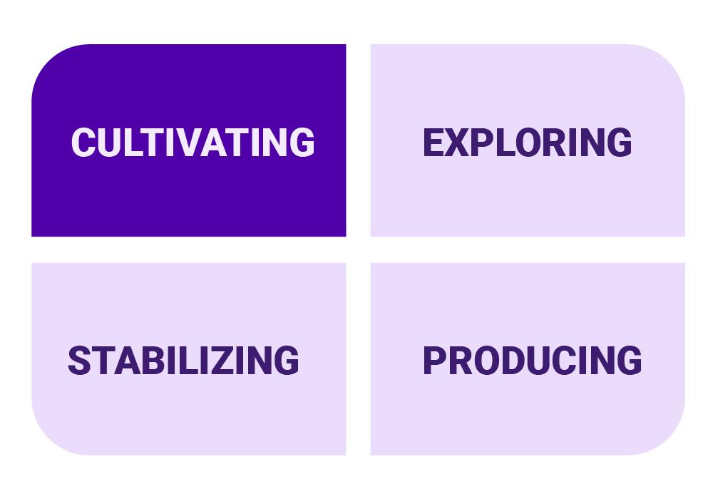 PI four culture types